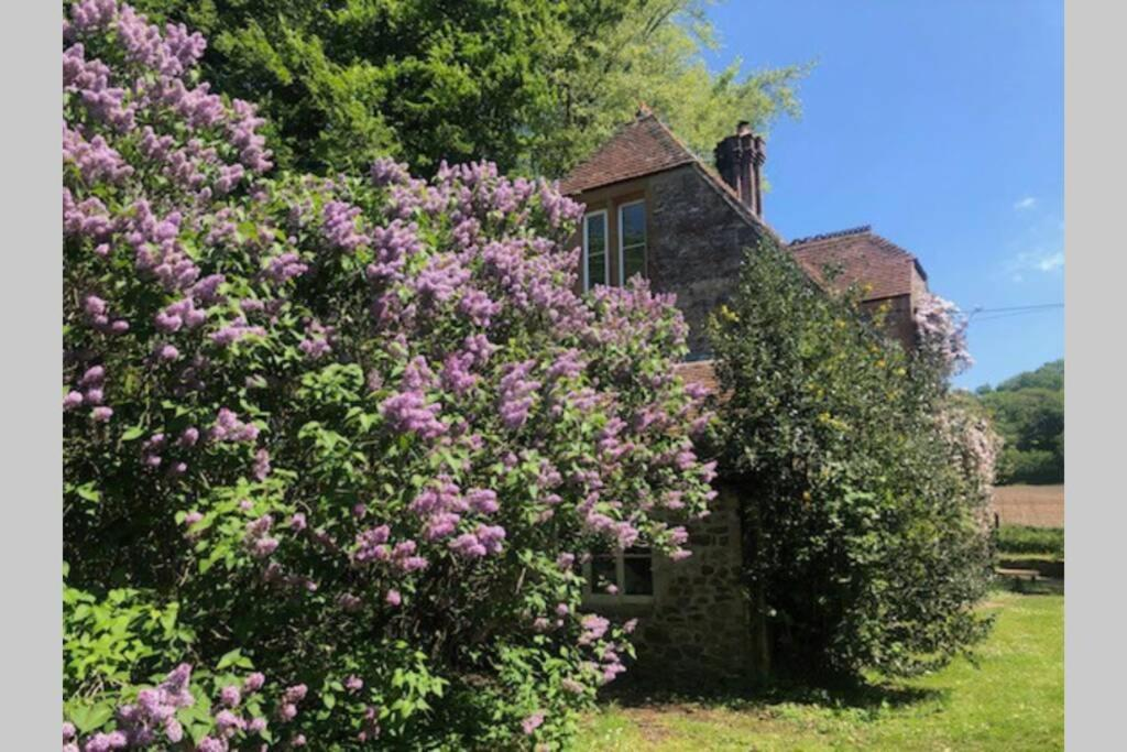 Beautiful converted Stable in peaceful Somerset, close to the Jurassic Coast