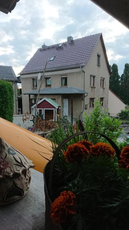 Ferienhaus - Cisinski- Urlaub auf dem Bauernhof