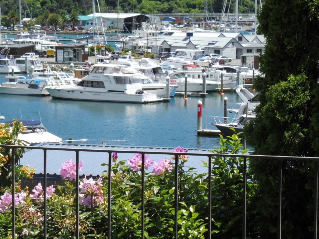 Picton Marina View