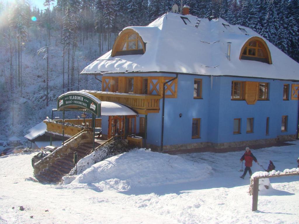 Hotel Vladimír im Winter