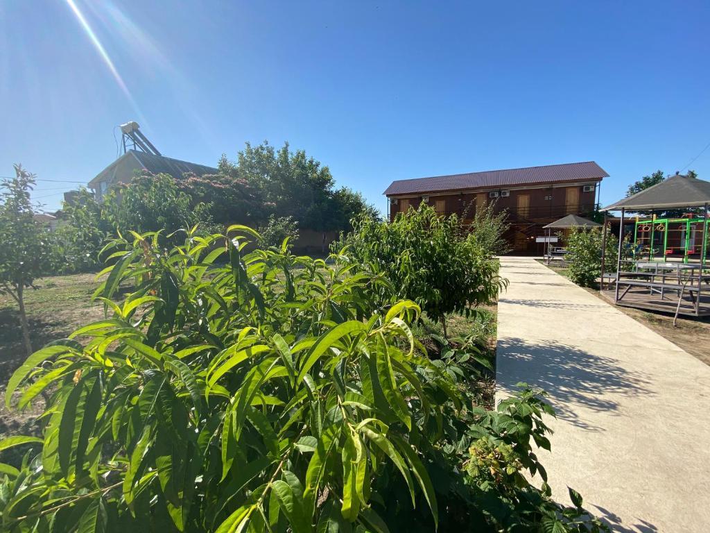 Blaga Camp-Hostel