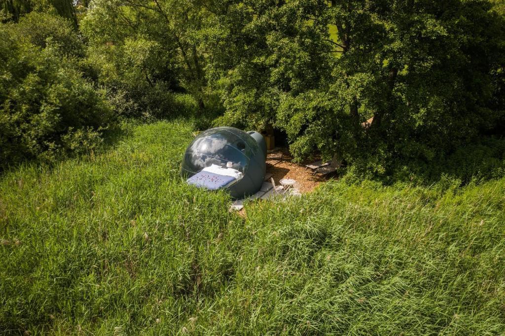 la Bulle - Nids des Marais