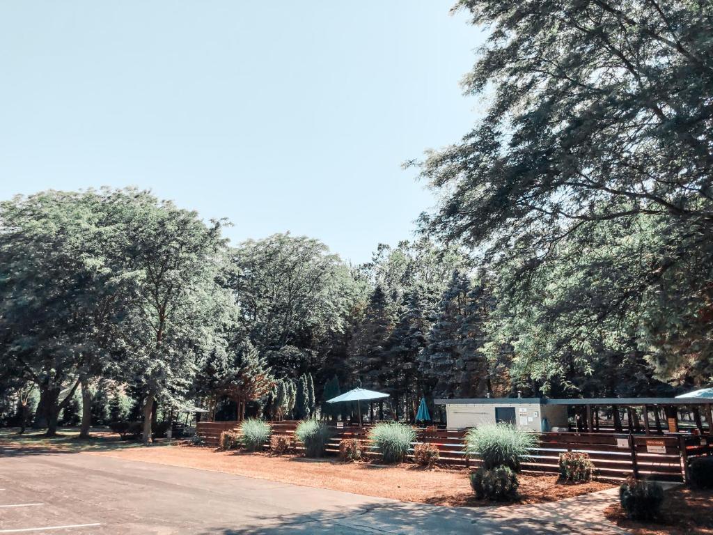 Starlite Resort