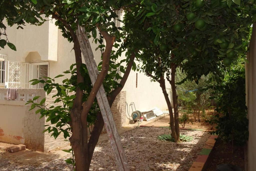 Villa Les 2 Orangers Agadir Updated 2021 Prices