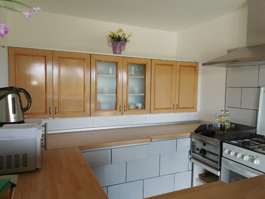 Kuchyň nebo kuchyňský kout v ubytování Apartments Tratinčica