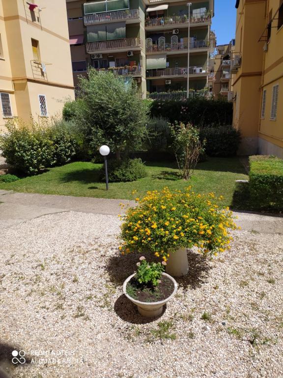Casa MiaMia vicinissima alla Guarda di Finanza al Mare e a Roma