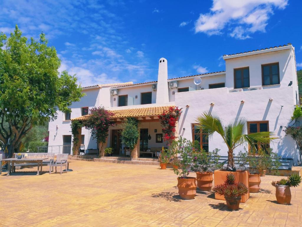 boutique hotels in alcalalí  1