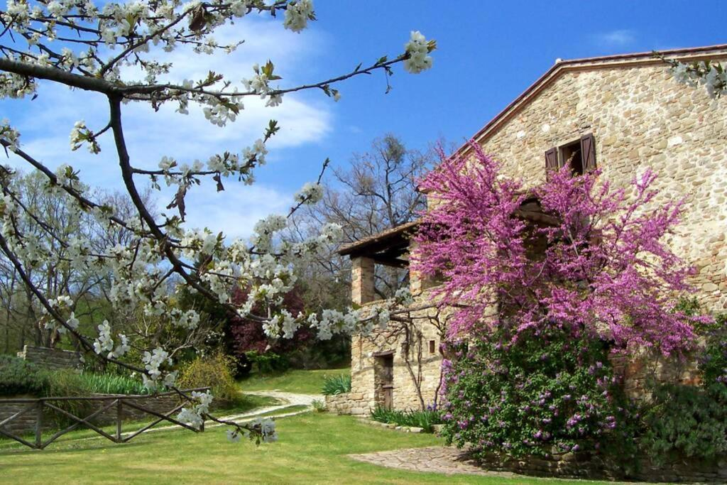 Il Poggio Agriturismo in Valtiberina Toscana