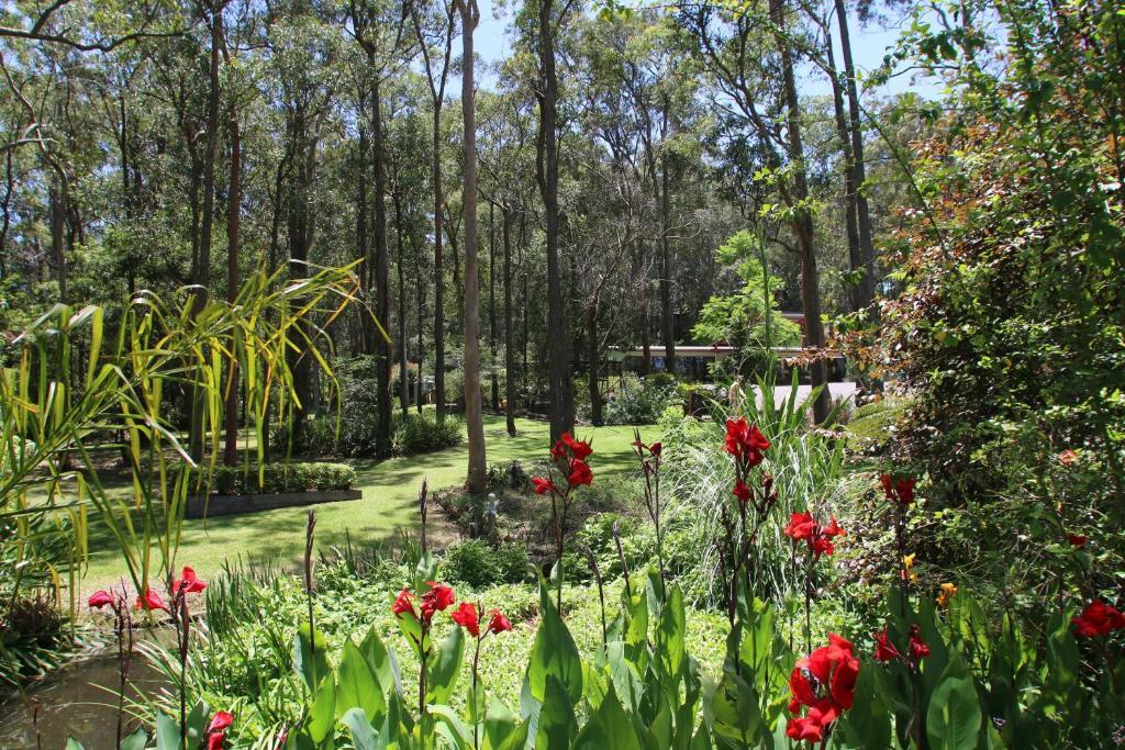 A garden outside Werekataba