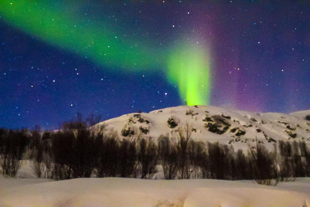 Rezort Aurora Borealis Observatory (Nórsko Olsborg