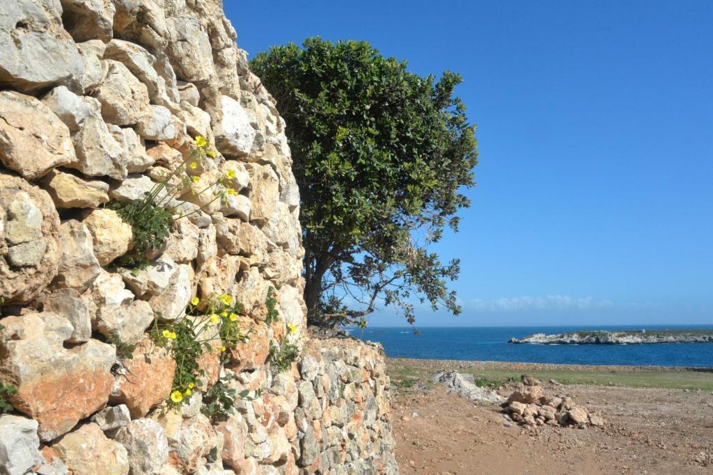 Villa  Villa dell'Isola