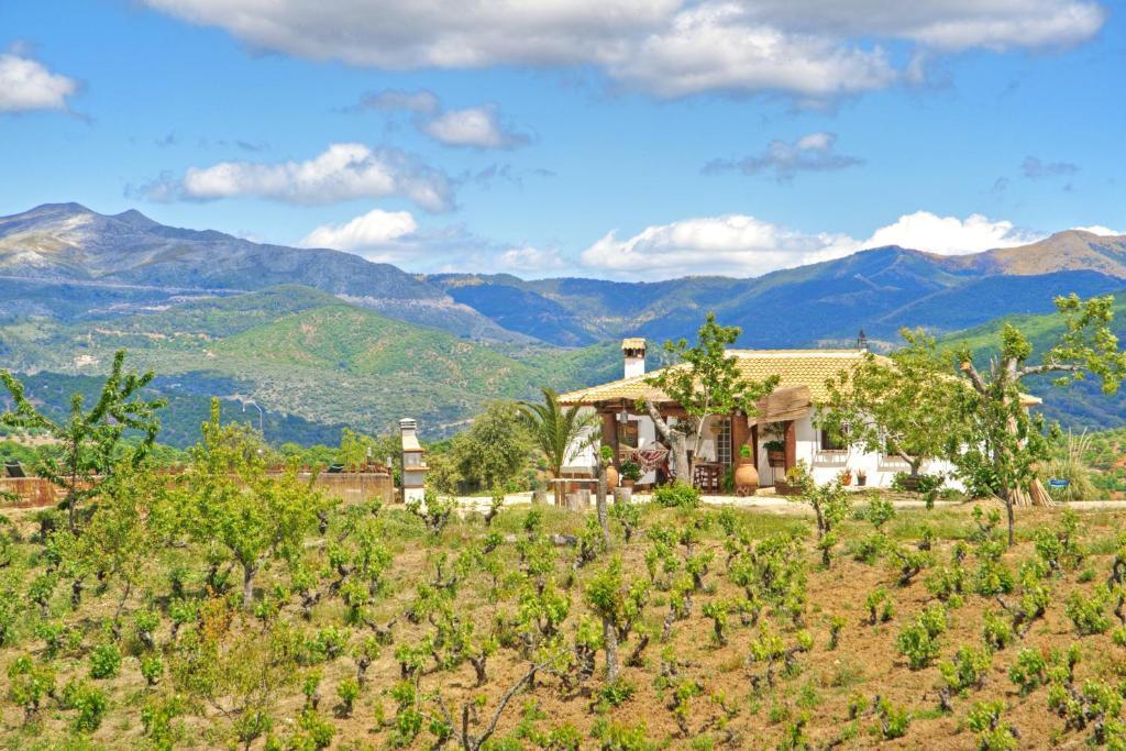 Casa Rural Juzcar