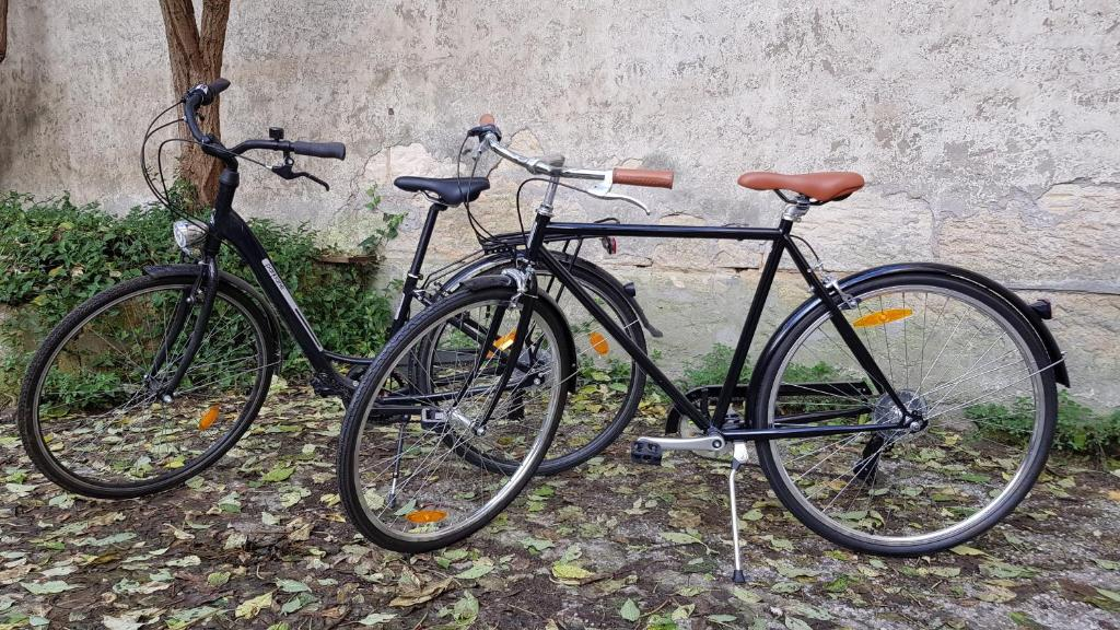 Biking at or in the surroundings of La Maison de Sebea