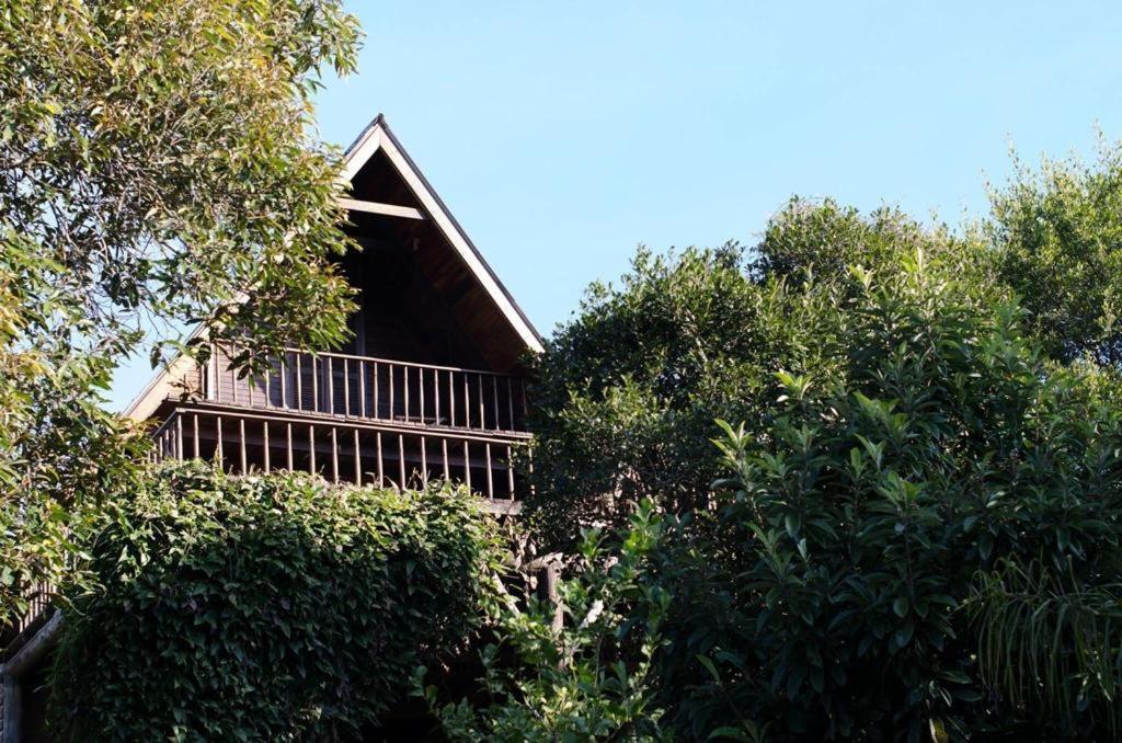 Cabana na Montanha