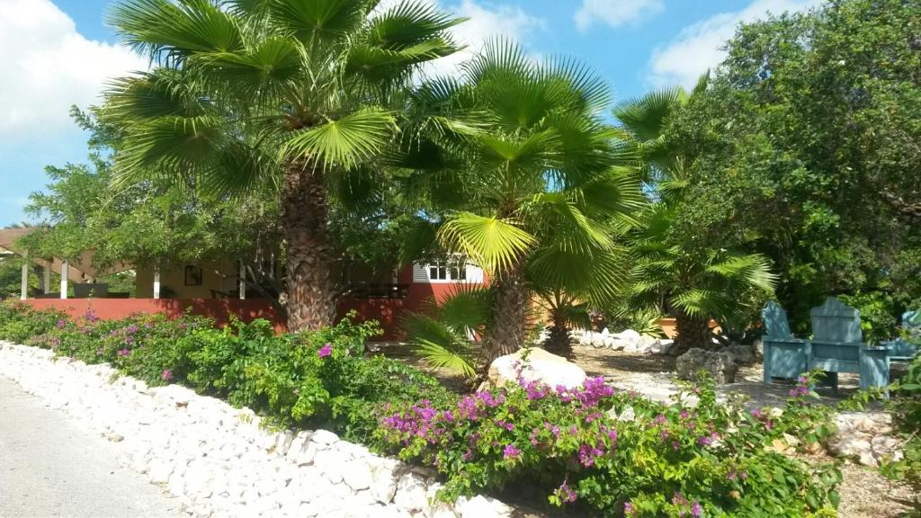 Um jardim em Piscadera Bay Resort 80