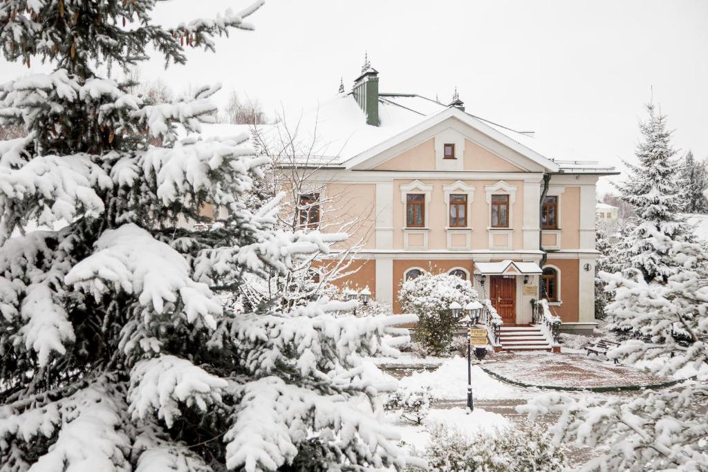 Арт Отель Николаевский Посад зимой