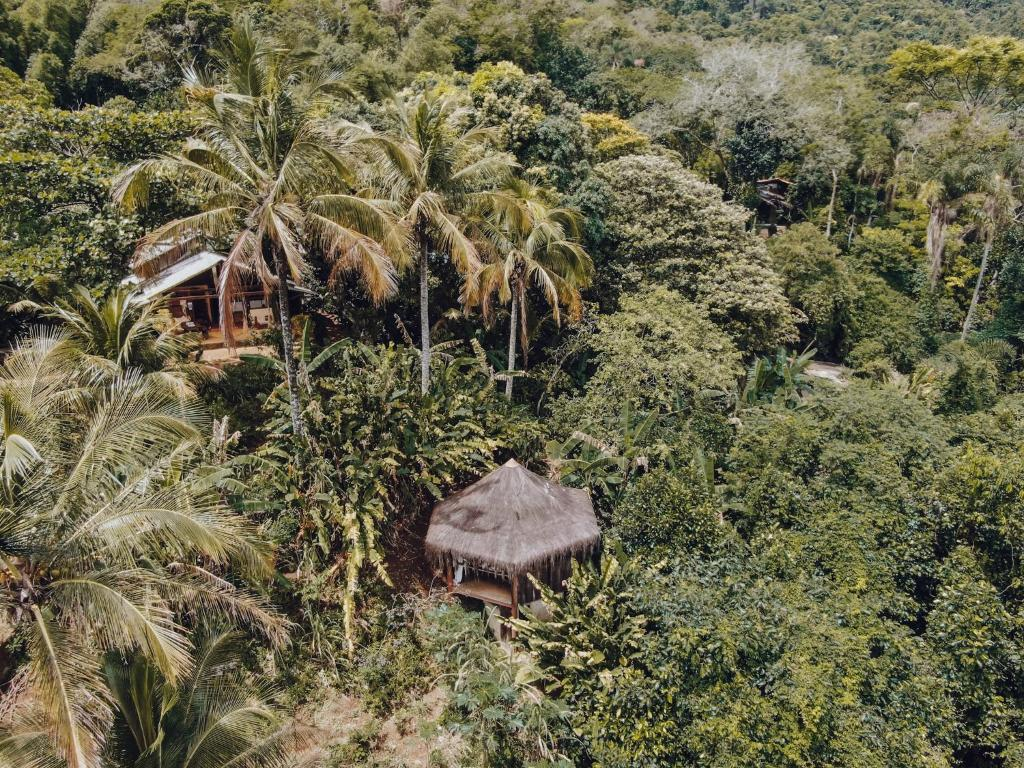 A bird's-eye view of Jungle Lodge