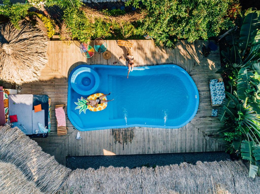 The swimming pool at or near El Zoo Hostel & Pool