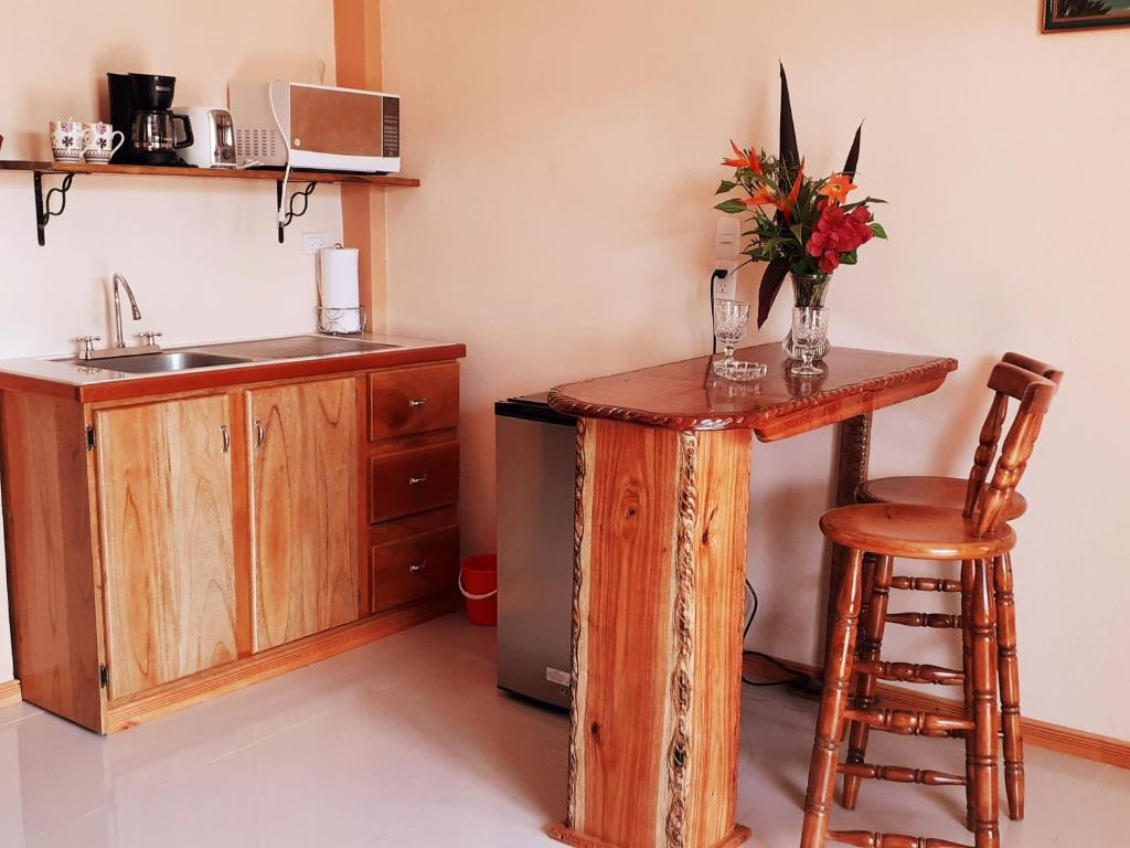 A kitchen or kitchenette at VILLA MANOLO CORCOVADO, Ocean & Forest view Lodge, Bar & Restaurant