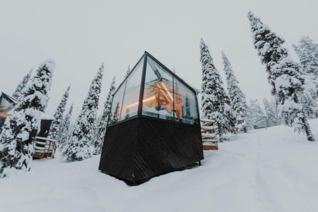 Magical Pond Nature Igloos during the winter