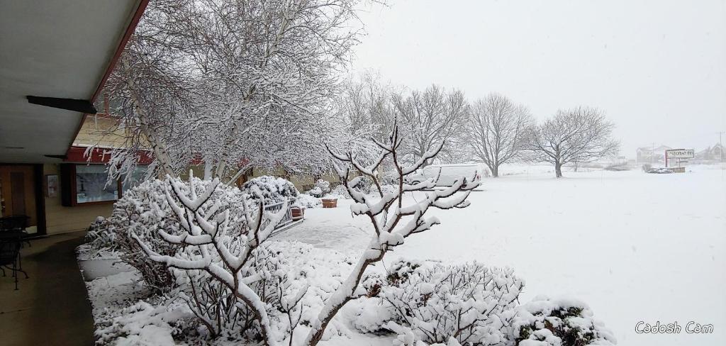 The Usonian Inn LLC during the winter