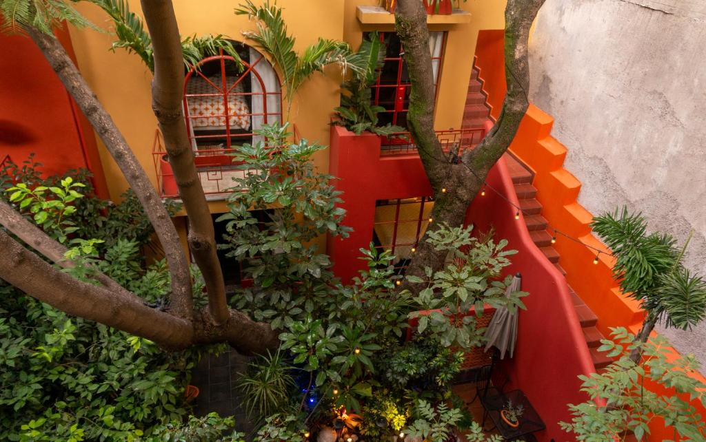 The Red Tree House