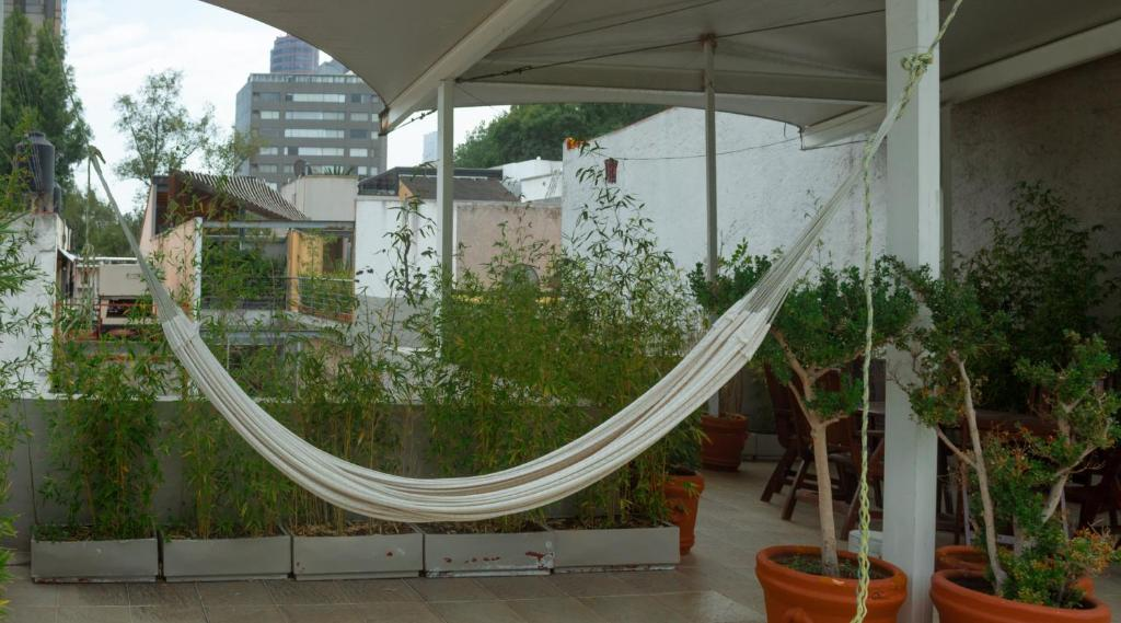 1BR Beautiful apartment in the heart of Polanco!