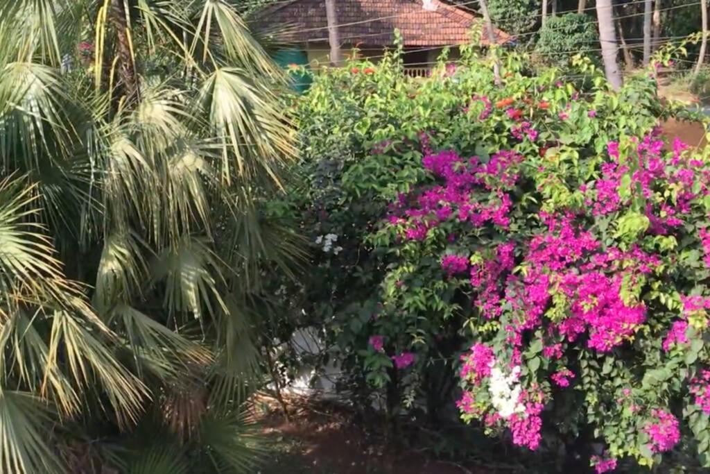 1BHK Luxury Homestay In Betalbatim, South Goa. 500m from Beach.