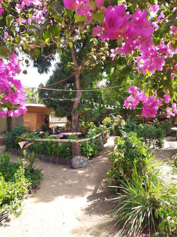 Jardín al aire libre en Centre Touristique et Culturel Casamance