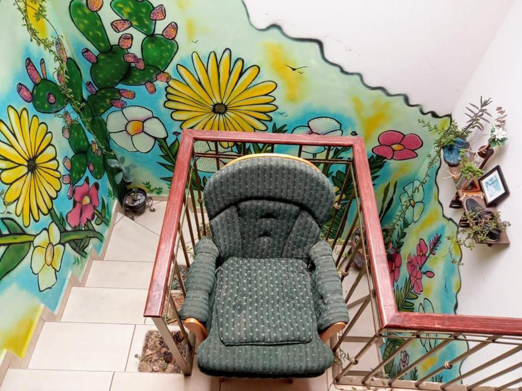 The House of Plants, Complete Cozy House in Zacatecas City, Mexico