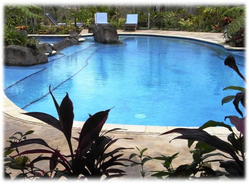 Der Swimmingpool an oder in der Nähe von Amanaki Hotel