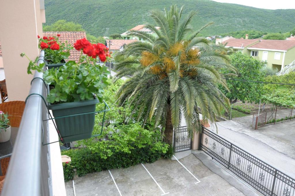 A balcony or terrace at Apartments Royal