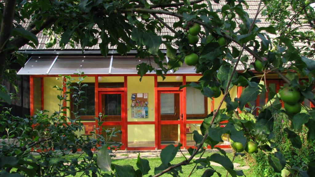 Zahrada ubytování Privat AVE