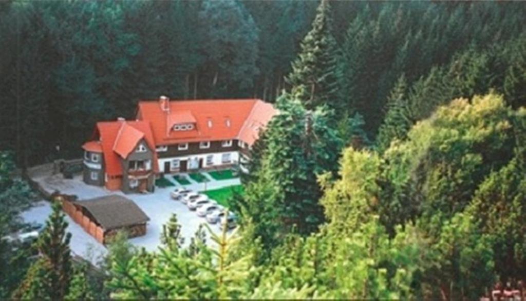 Blick auf Ferienwohnungen Wiesenhof aus der Vogelperspektive