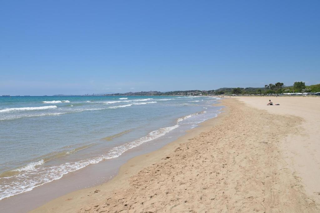 A beach at or near the campground