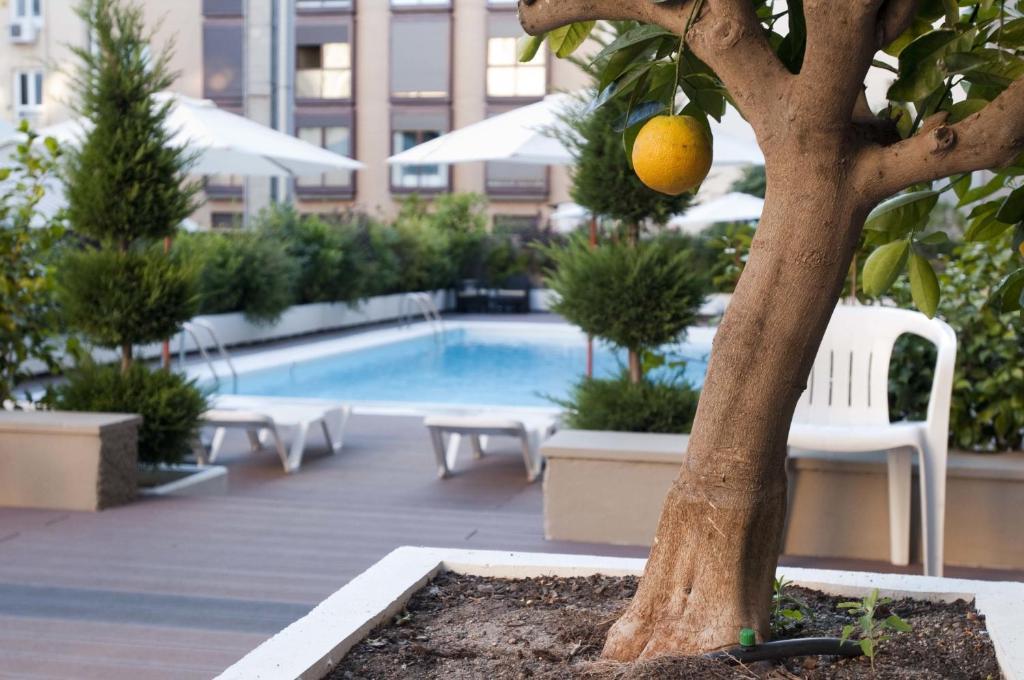 Der Swimmingpool an oder in der Nähe von Apartamentos Juan Bravo