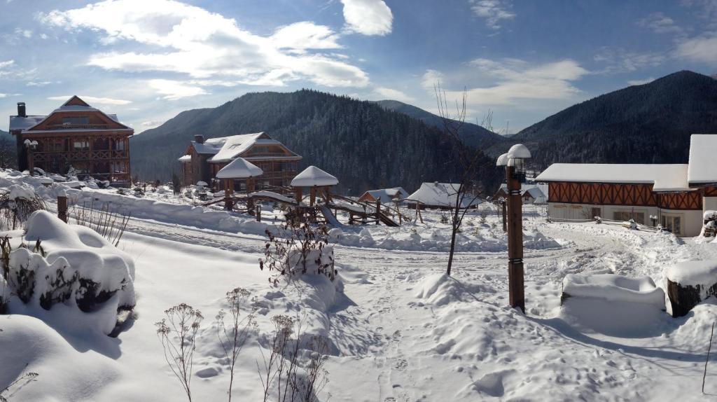 Коруна зимой