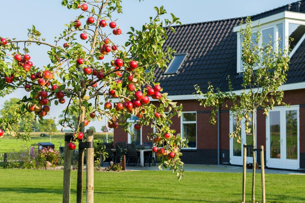 Een tuin van B&B Kröddeburen