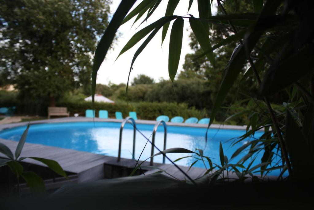 The swimming pool at or near Villa Belvedere