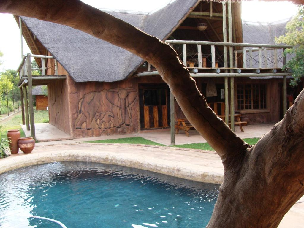 The swimming pool at or near The Royal Gecko Bushveld Lodge