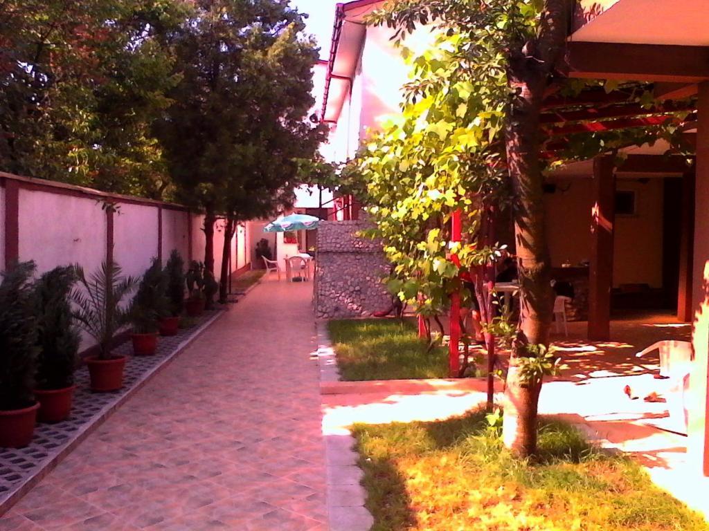 A garden outside Vila Popoiu