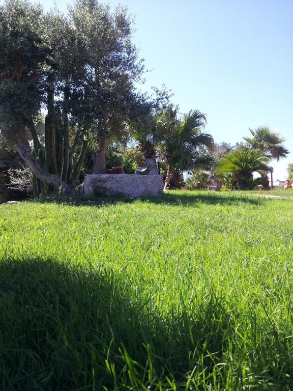 Casa vacanze  Monolocale Favignana
