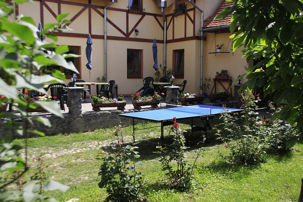 Table tennis facilities at Pensiunea Bendorfeanu or nearby