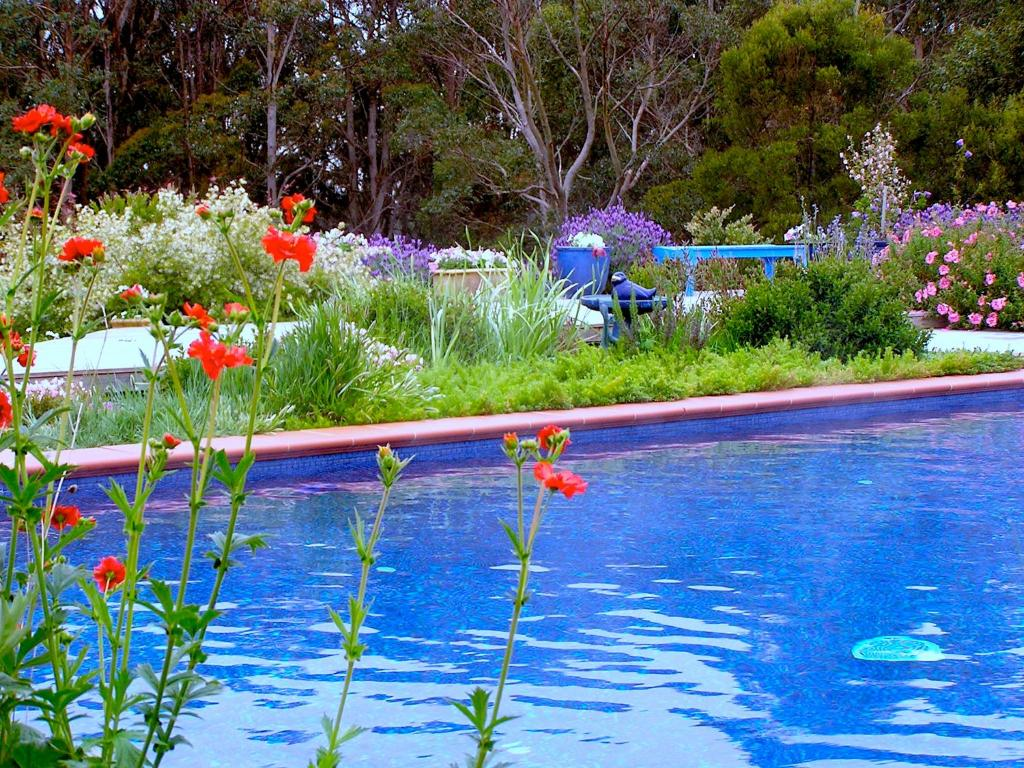 The swimming pool at or near Lemonade Creek Cottages