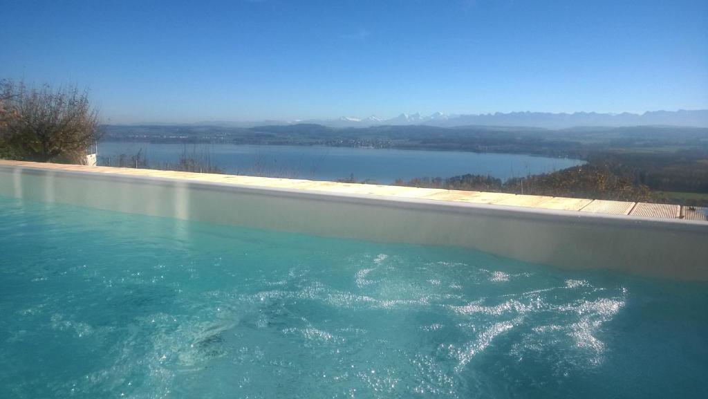 Der Swimmingpool an oder in der Nähe von Swiss Borzoi House