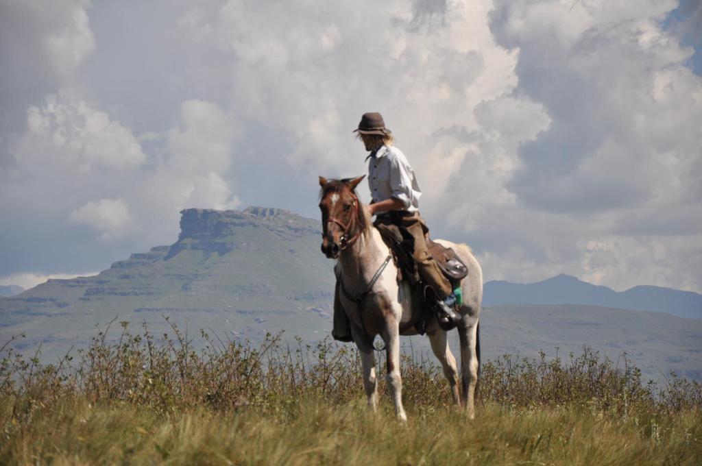 Paardrijden bij de vakantieboerderij of in de buurt