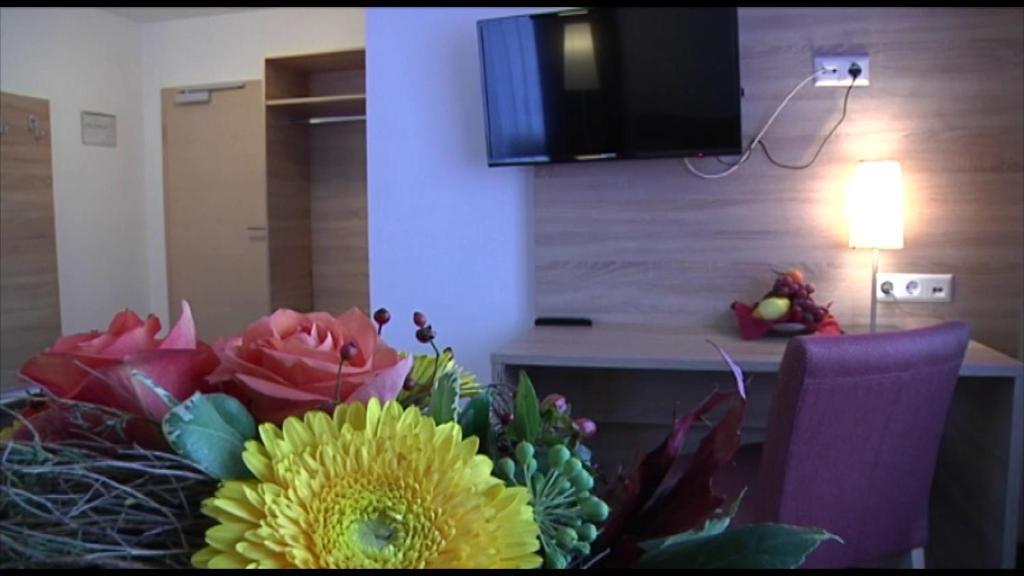TV/Unterhaltungsangebot in der Unterkunft Gasthof Traube