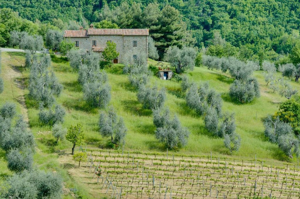 Vista aerea di Agriturismo Bindozzino