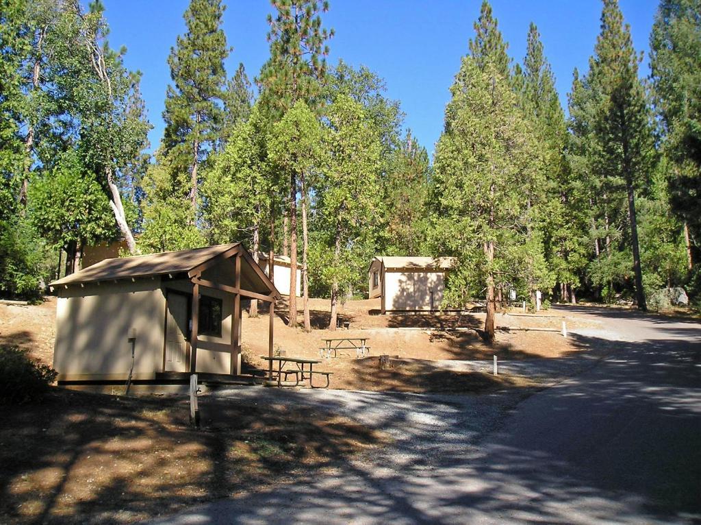 Yosemite Lakes Bunkhouse Cabin 31