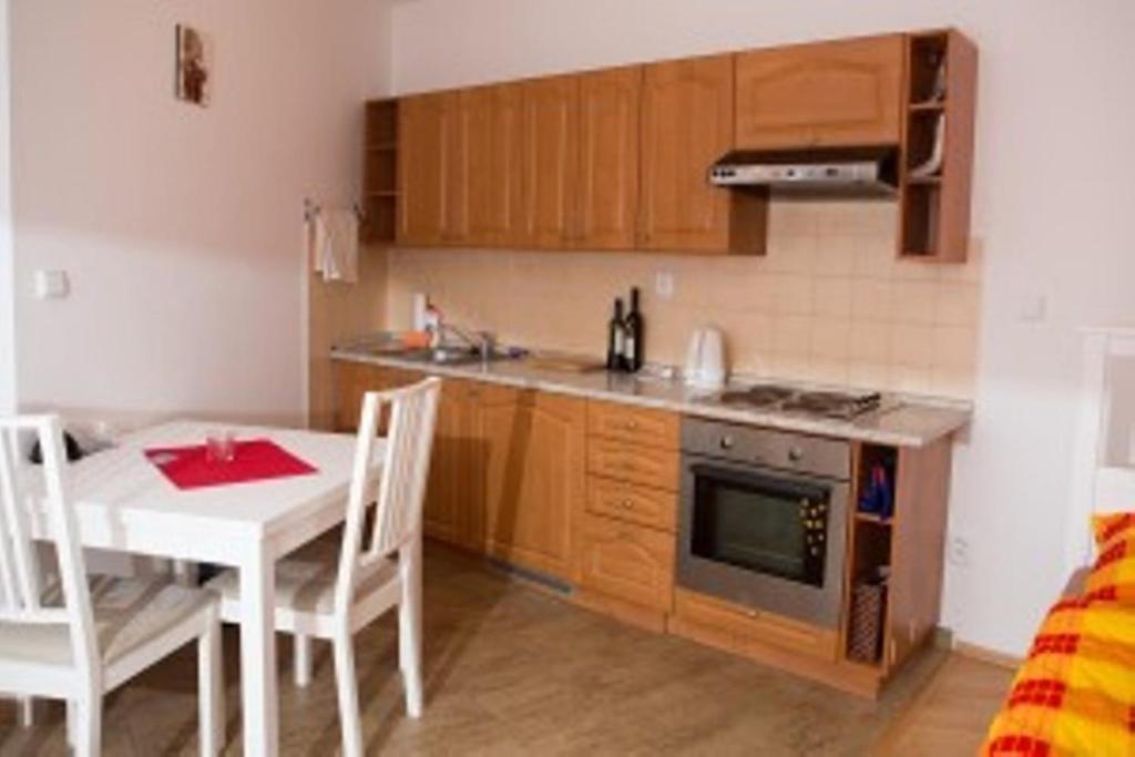 Kuchyň nebo kuchyňský kout v ubytování Guest House Beroun